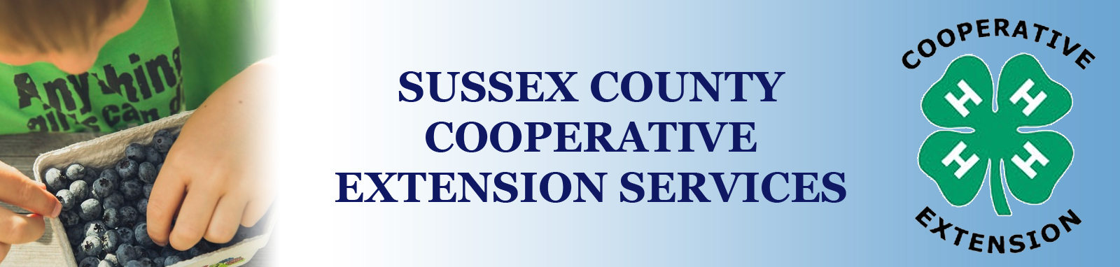 Cooperative Extension Services